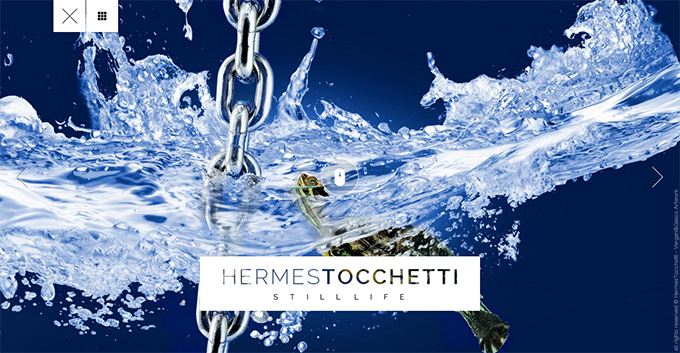Homepage---Hermes-Tocchetti